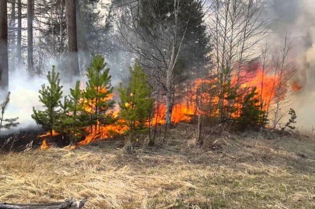 Региональное МЧС напоминает оренбуржцам о необходимости осторожно обращаться с огнем.
