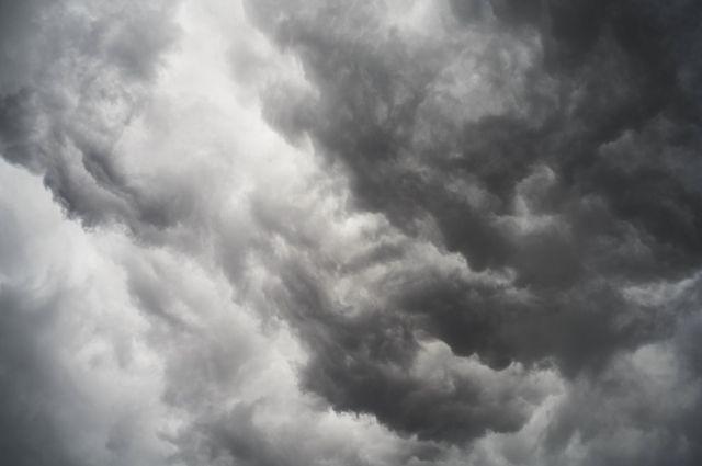 7 мая в Ярославле сохранится сильный западный ветер