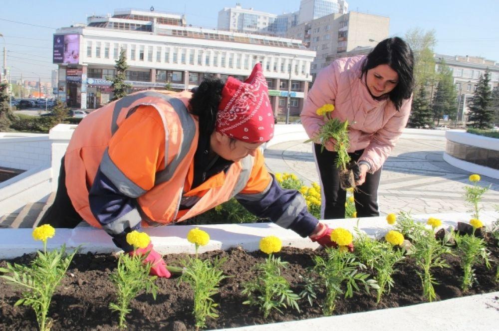 Новые цветы появились в общественных пространствах.