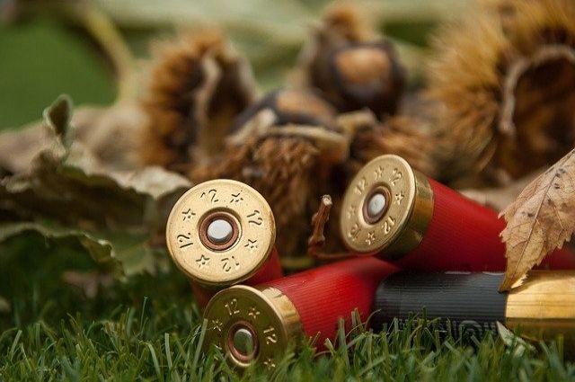 В Оренбуржье возбуждено уголовное дело о незаконной охоте.