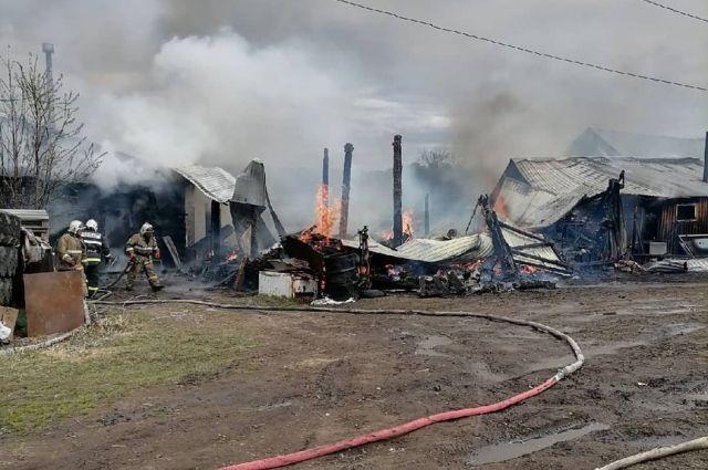 К счастью, на пожаре никто не пострадал. Но строение выгорело почти до тла.