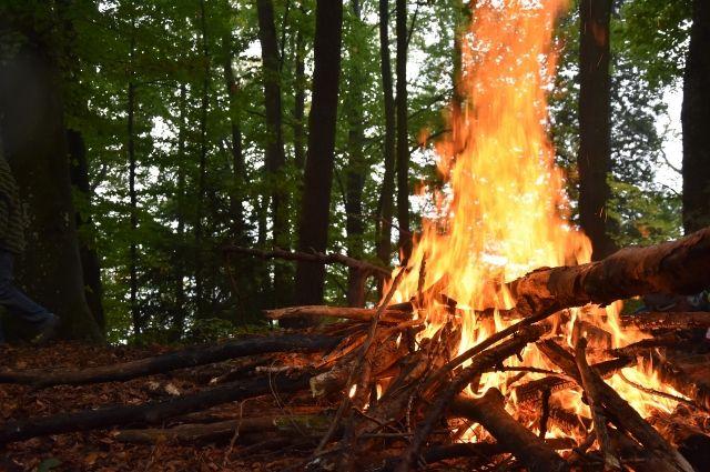 В Тюменской области действуют 18 пожаров