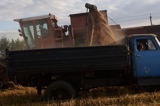 Артур Зубов: «Понадобились новый трактор и сеялка, взяли кредит на хороших условиях».