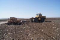 Взяться за обработку земли, которая давно не использовалась по назначению, дело непростое.