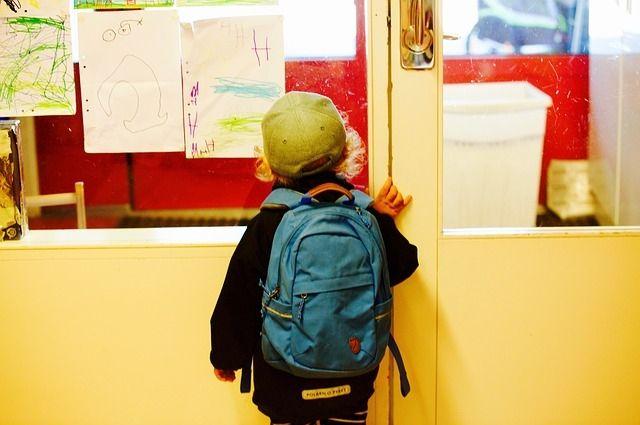 В школах Оренбуржья усилен пропускной режим.