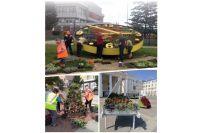 9 млн рублей выделено на посадку цветов в областном центре и последующий уход за ними. В этом году появится 7 новых зелёных зон.
