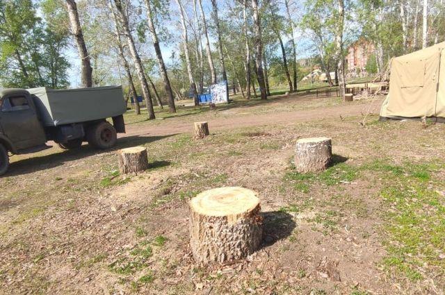 В Оренбурге прокуратура требует возбудить уголовное дело по вырубке 17 деревьев на Красной площади.