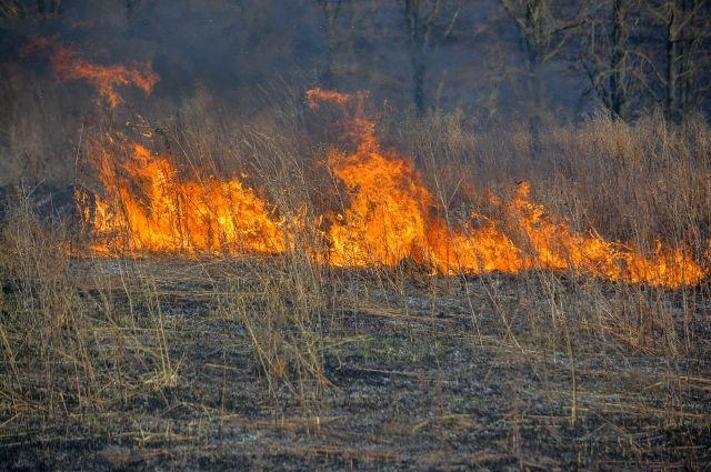 Огнеборцы не дали пламени перекинуться на жилые дома.