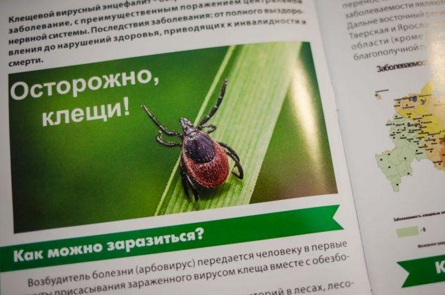 В Архангельской области начался сезон присасывания клещей