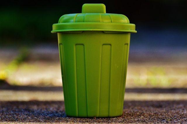 Журналисты написали, что распространению бешенства в с. Аксарка способствовала нехватка мусорных контейнеров