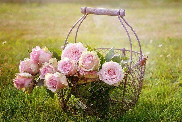 Тобольск украсят цветами