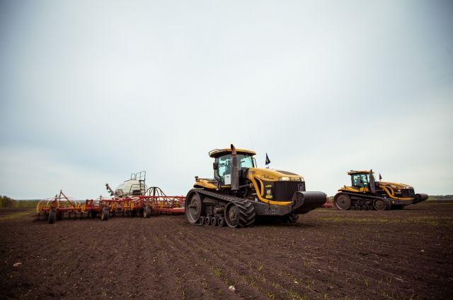В этом году холдинг планирует засеять 11 000 га полей.