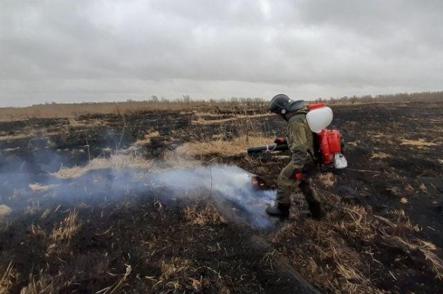 Специалисты пожарных и спасительных формирований региона напоминают о необходимости соблюдения правил пожарной безопасности в лесах региона, о запрете пала сухой растительности