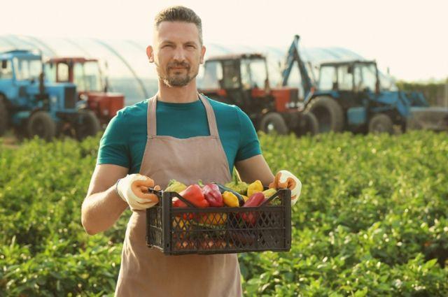 Россельхозбанк разработал новый продукт – «Бизнес-карта Фермера».