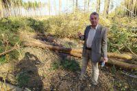 Государственный инспектор по охране леса Владимир Стенюшкин.