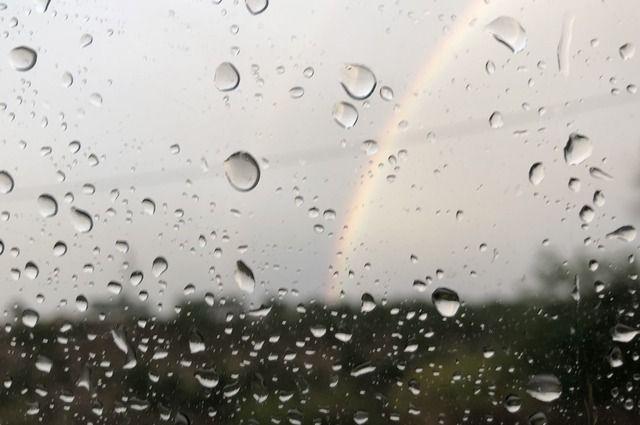 Местами дожди