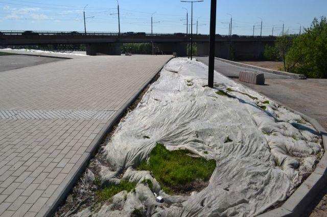 Пространство живет? Денис Паслер «не заметил» заброшенный газон на набережной Урала.
