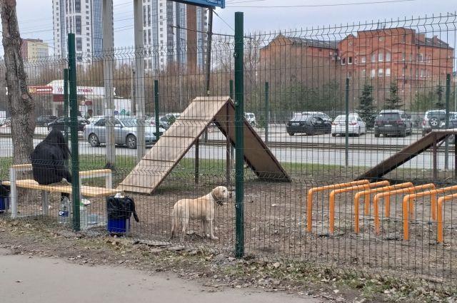 Современные площадки для выгула собак появились в Центральном районе Челябинска.