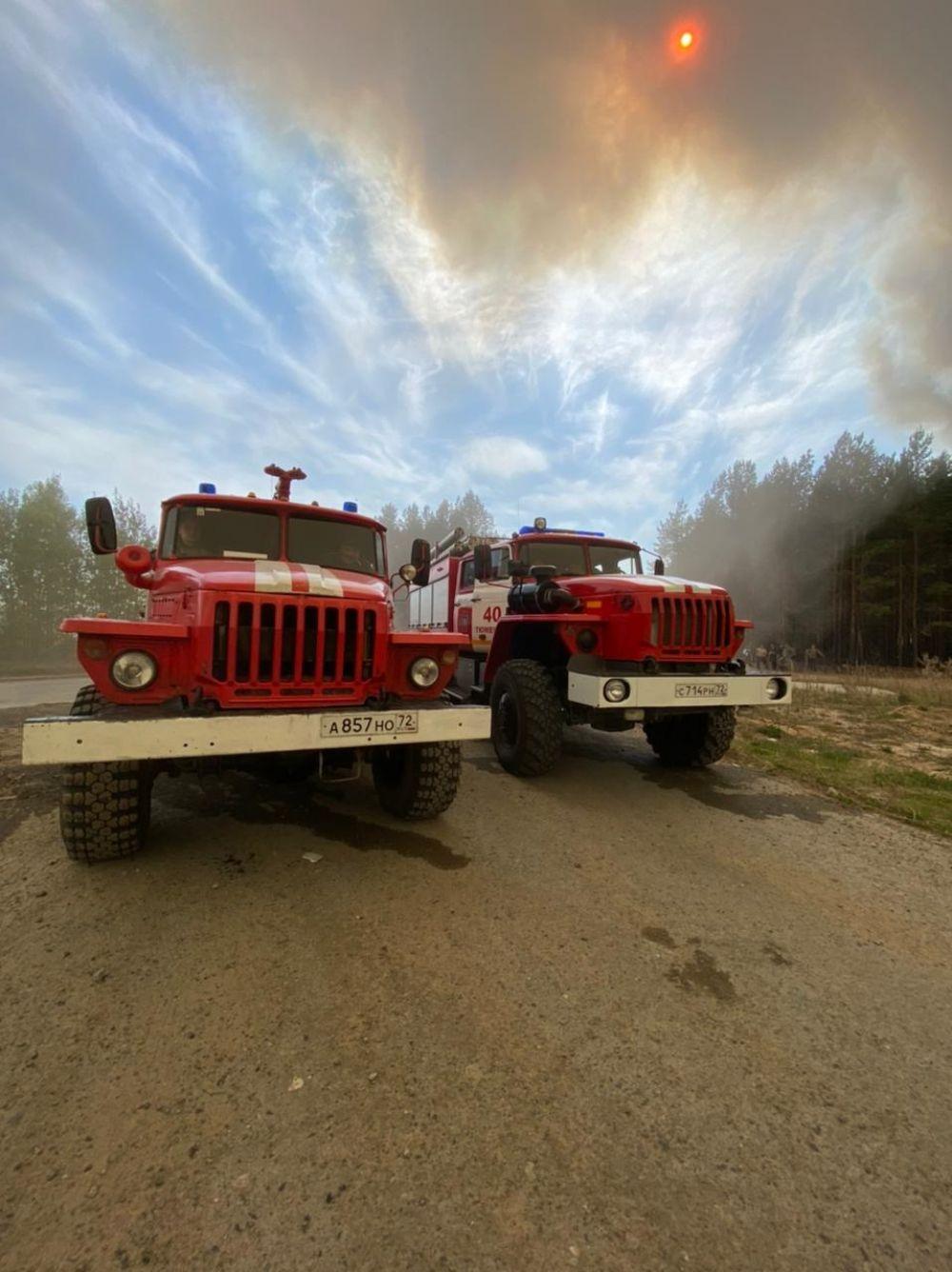 Красное солнце от дыма. Лесные пожары в Тюменской области, 2021