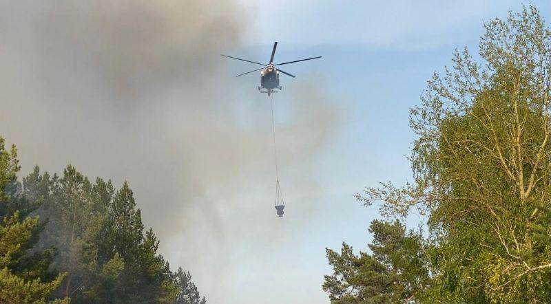На борьбу с огнем всеми силами. Лесные пожары в Тюменской области, 2021