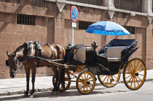 Идеальный экологичный транспорт будущего – бензин не потребляет, выхлопов нет, ну почти.