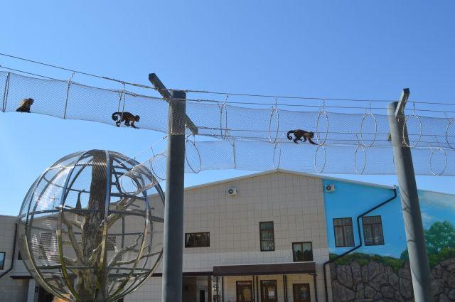 Шаровидные вольеры для летнего выгула приматов были построены в прошлом году.