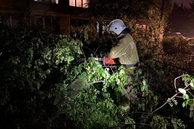 Спасатели 30 раз выезжали по сообщениям о падении деревьев.