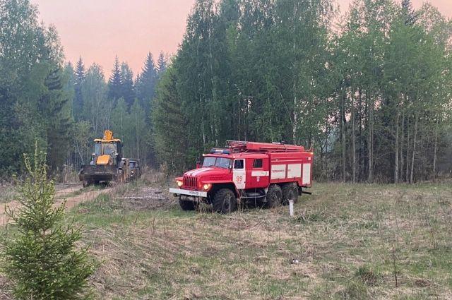 Пожар стал самым крупным в Пермском крае с 31 мая 2015 года