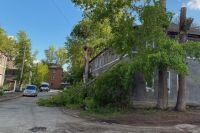 Дерево чуть не придавило прохожую в 4-м переулке Римского-Корсакова в Новосибирске.
