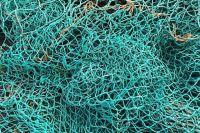 Рыбак из Оренбуржья может лишиться свободы на два года.