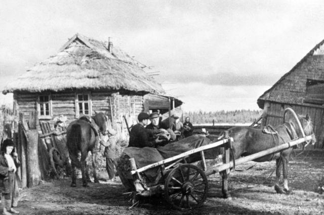 Крестьяне снабжают партизан хлебом, Псковская область, 01.09.1942.
