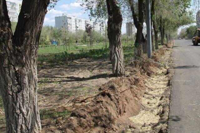 Реконструкция парка обошлась бюджету Оренбурга почти в 19 млн рублей.