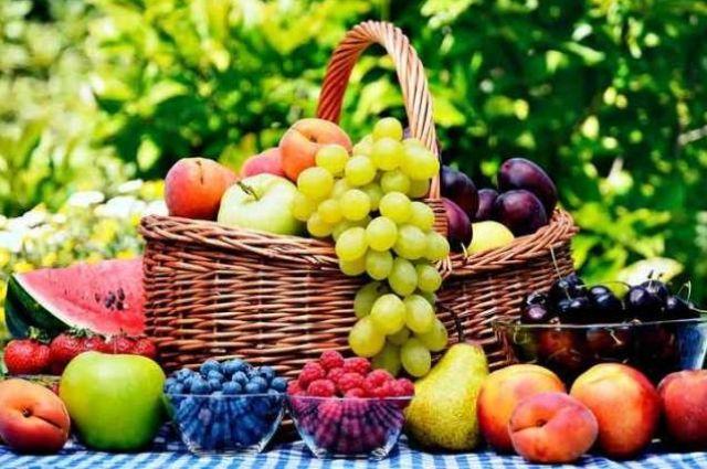 Урожай-2021. Можно ли надеяться на дешевые ягоды, овощи и фрукты.