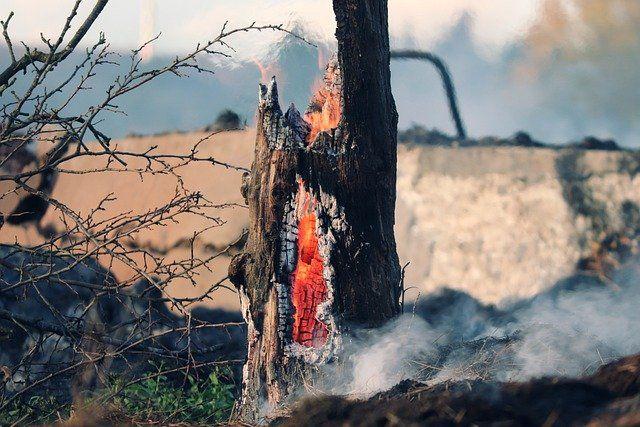 Александр Моор побывал на месте пожара