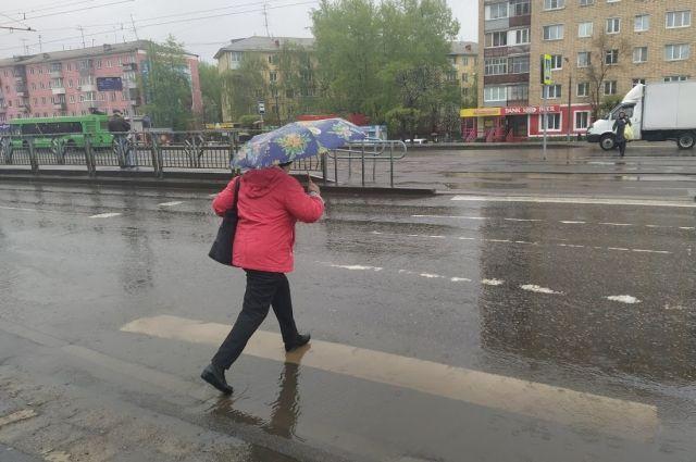 Жары в ближайшее время не будет, ожидаются дожди.