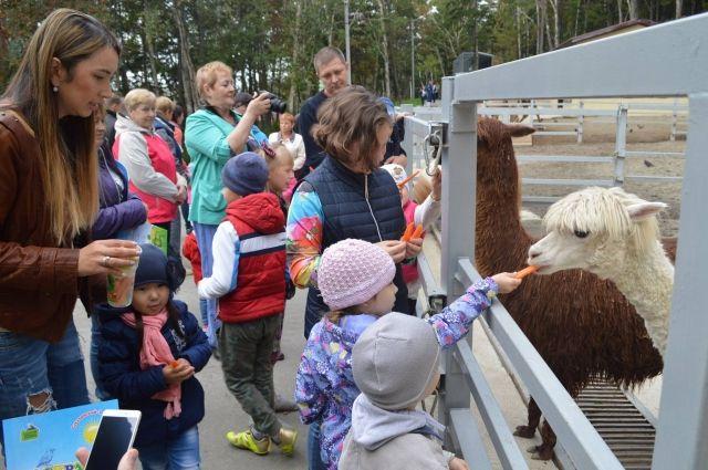 Содержимое кормовых стаканов, предусмотренных для продажи в зоопарке, входит в суточный рацион животных, тем самым предотвращается ежедневное перекармливание.