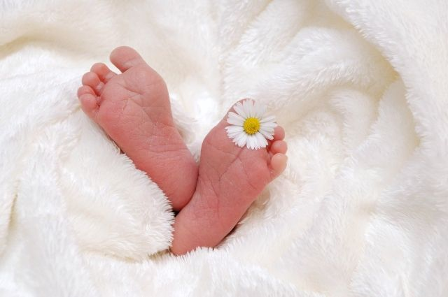 Местные жители дали девочкам имена: Мишель, Розалина, Эльза, Майя, Сабрина, Афина, Амелия.