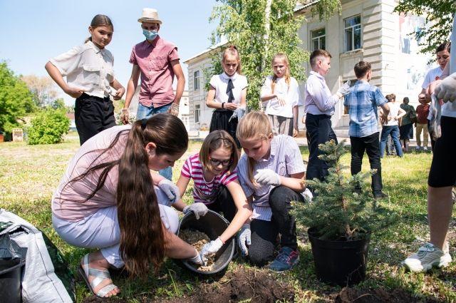 За неделю «ЁлкаФеста» в Самаре станет на несколько десятков елей больше.