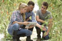 Россельхозбанк совместно с компанией «ВетЭксперт» создали программу поддержки «Телеветеринар».
