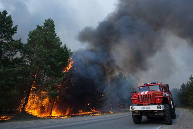 Лесной пожар в Тюменской области. 15.05.2021 г.