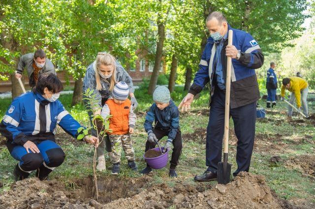 Малышей учат высаживать яблони.