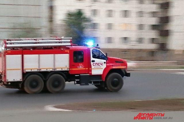 Под Оренбургом подожгли лес, который тушили несколько часов.