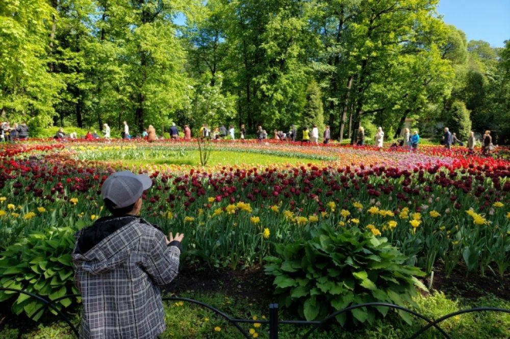 Фестиваль тюльпанов прошел в атмосфере поэзии 60-х годов.