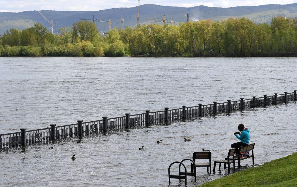 Девушка сидит на скамейке на затопленной набережной Енисея в центре Красноярска