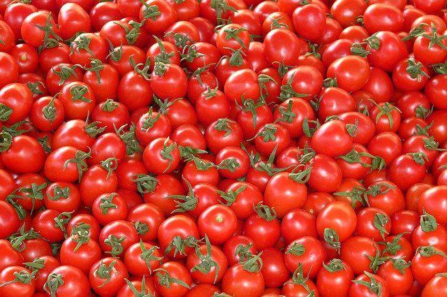 Минсельхоз увеличил квоту на ввоз томатов из Турции на 50 тысяч тонн