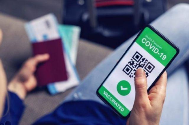 Семь стран Европейского союза начали выдавать COVID-паспорта.