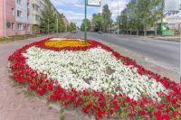 В окружной столице высадят 213 342 цветка, 2000 кустарников и 500 деревьев