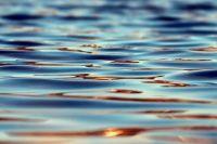 В Переволоцком районе оставшаяся без присмотра малышка утонула в баллоне с водой.