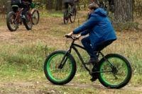 Тропа Паустовского пользуется популярностью и у велотуристов, и у пеших ценителей природы и культуры.