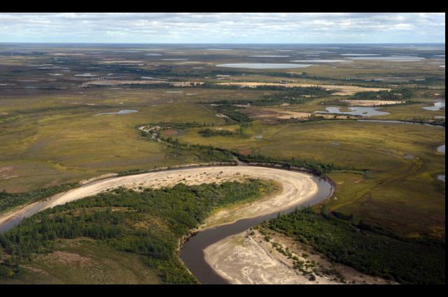 Площадь природных парков должна увеличиваться под контролем экологов и научного сообщества